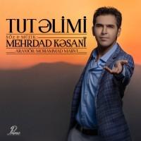 Mehrdad-Kasani-Tut-Alimi
