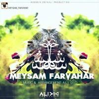 Meysam-Farvahar-3-Shakhe-Gol