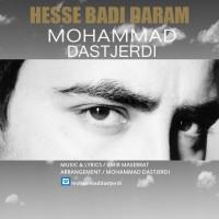 Mohammad-Dastjerdi-Hesse-Badi-Daram