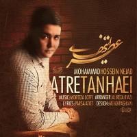 Mohammad-Hosseinnejad-Atre-Tanhaei