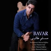 Moslem-Talebi-Bavar