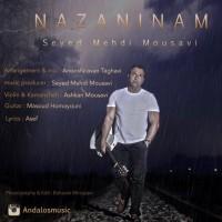 Seyed-Mehdi-Mousavi-Nazaninam