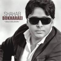 Shahab-Bokharaei-Gole-Goldoon
