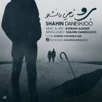 Shahin-Daneshjoo-Boro