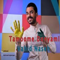 Vahid-Naseh-Tamoome-Donyami