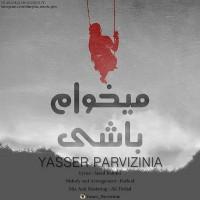 Yaser-Parvizinia-Mikham-Bashi