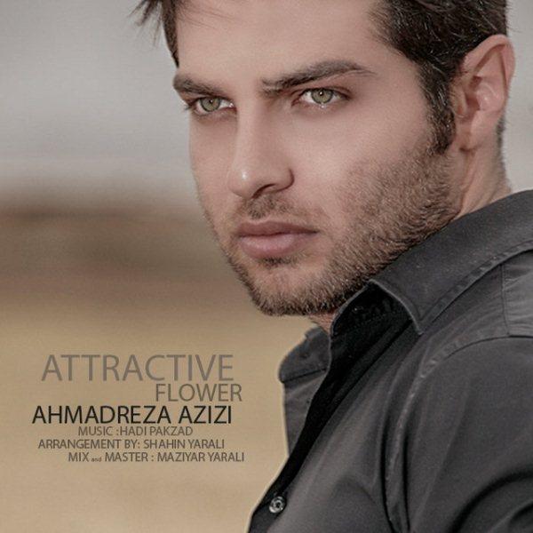 Ahmadreza Azizi - Gole Delfarib