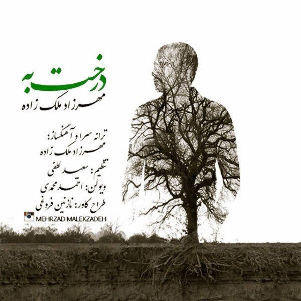 Mehrzad Malekzadeh - Derakhte Beh
