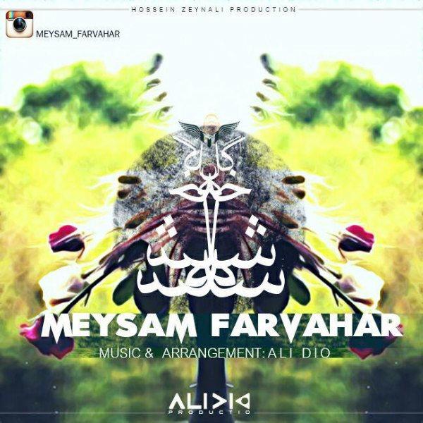 Meysam Farvahar - 3 Shakhe Gol