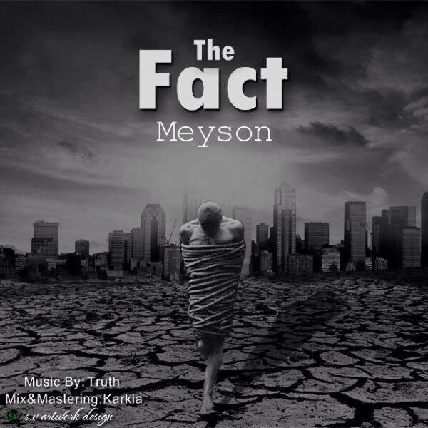 Meyson - The Fact