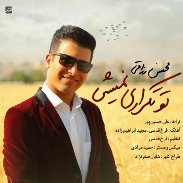 Mohsen Razaghi - To Tekrari Nemishi
