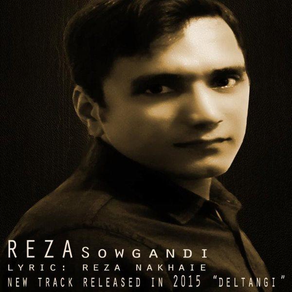 Reza Sowgandi - Deltangi