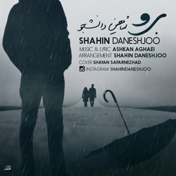 Shahin Daneshjoo - Boro