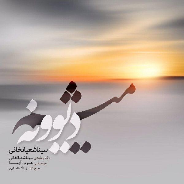 Sina Shabankhani - Divooneh Misham