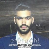 Ali-Erfanimanesh-Etefagh