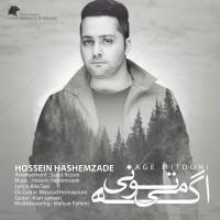 Hossein-Hashemzade-Age-Mitooni