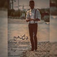 Mehran-Shahbazi-Dele-Man-Hich