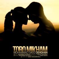 Mohammad-Saeid-Dehghan-Toro-Mikham