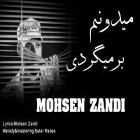 Mohsen-Zandi-Midoonam-Barmigardi