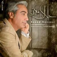 Saeed-Mansoor-Halalet-Mikonam