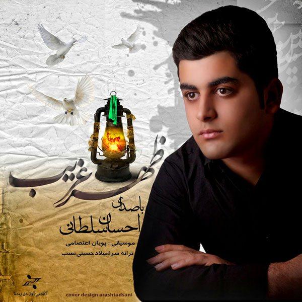 Ehsan Soltani - Shahre Gharib