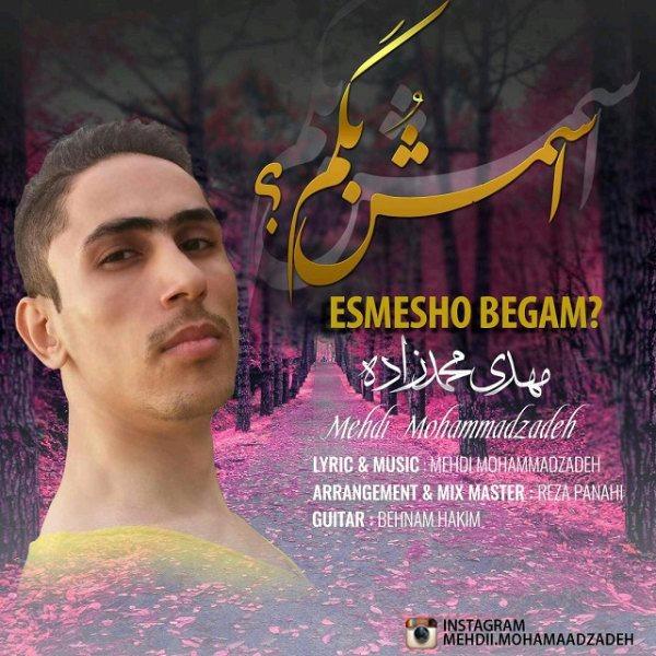 Mehdi Mohammadzadeh - Esmesho Begam