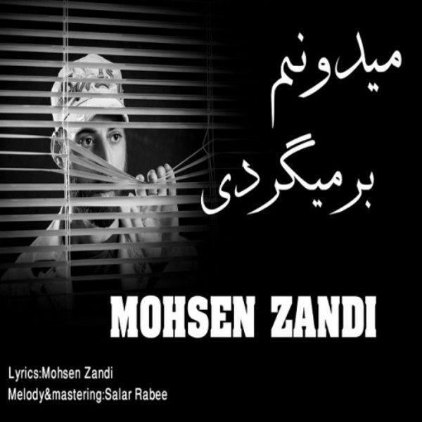 Mohsen Zandi - Midoonam Barmigardi