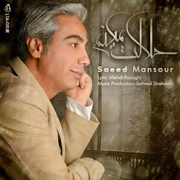 Saeed Mansoor - Halalet Mikonam