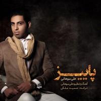 Ali-Sohani-Paeiz