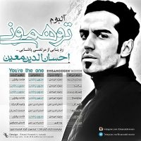 Ehsanoddin-Moein-Nameh