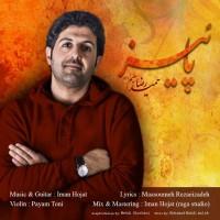 Hamid-Reza-Salimzadeh-Paeez