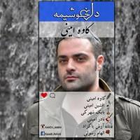 Kaveh-Amini-Del-Khoshimeh