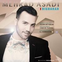 Mehrad-Asadi-Bi-Gharar