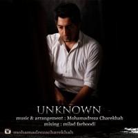 Mohammadreza-Charekhah-Majhool