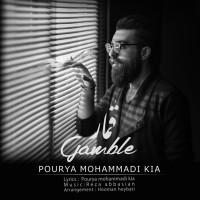 Pourya-Mohammadi-Kia-Ghomar