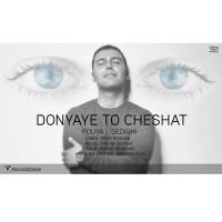 Pouya-Sedighi-Donyaye-To-Cheshat