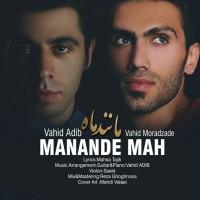 Vahid-Adib_Vahid-Moradzade-Manande-Mah