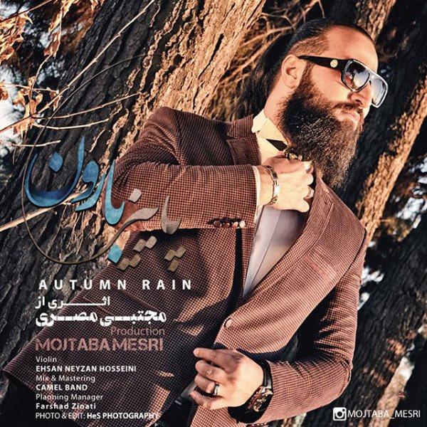 Mojtaba Mesri - Autumn Rain