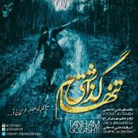 Ali-Dehaghi-Tanham-Gozashti