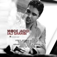 Ali-Gharibi-Mode-Jadid