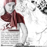 Farzad-Mohammadi-Bargard