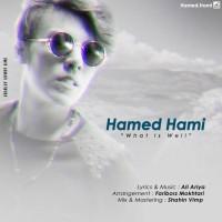 Hamed-Hami-Mage-Chi-Mishe-Khob