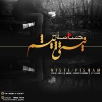Hesam-Saleh-Nisti-Pisham