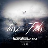 Mohamadreza-Naji-Tarz-e-Fekr