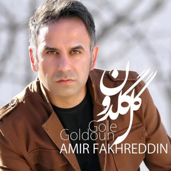 Amir Fakhreddin - Gole Goldoon