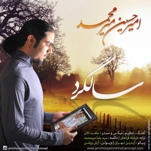 Amir Hossein Mir Mohammad - Salgard