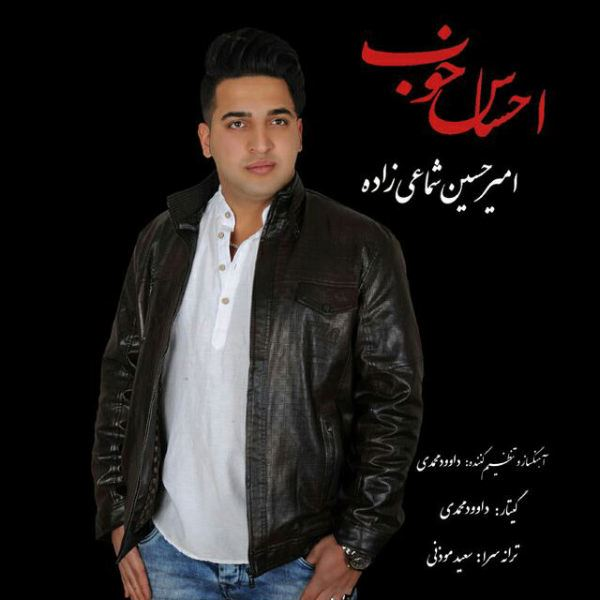 AmirHossein Shamaiizade - Ehsase Khub