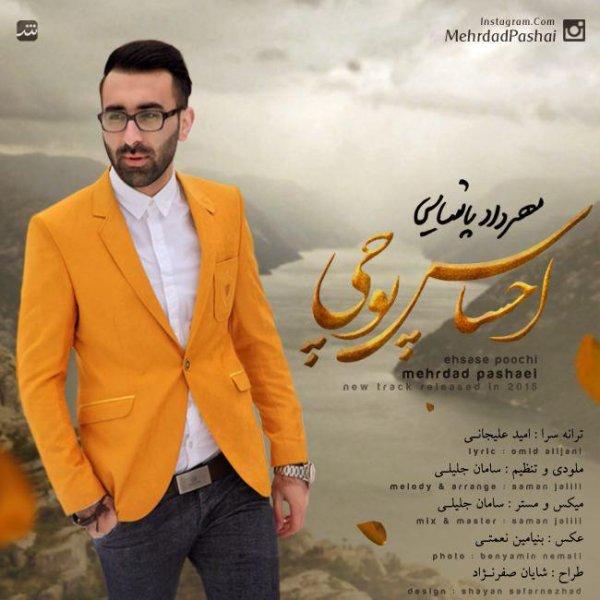 Mehrdad Pashaei - Ehsase Poochi