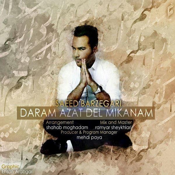 Saeed Barzegari - Daram Azat Del Mikanam