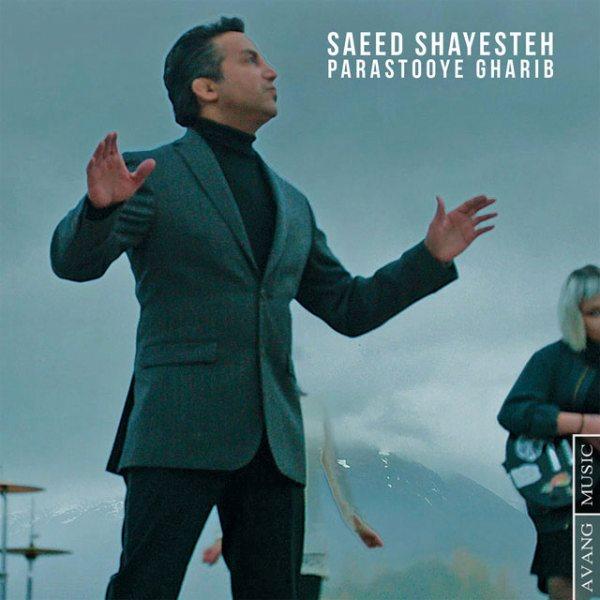 Saeed Shayesteh - Parastooye Gharib